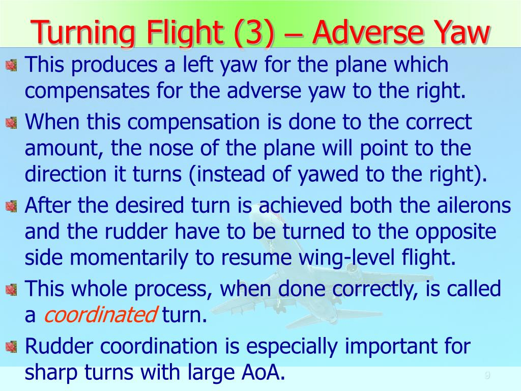 Turning Flight (3)