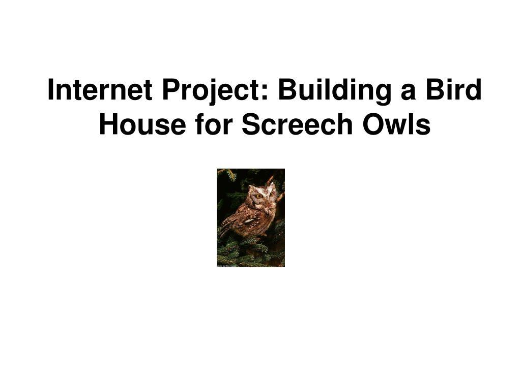 Internet Project: Building a Bird House for Screech Owls