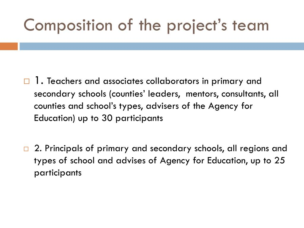 Composition of the project's team