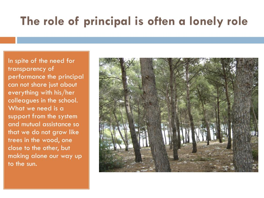 The role of principal is often a lonely role
