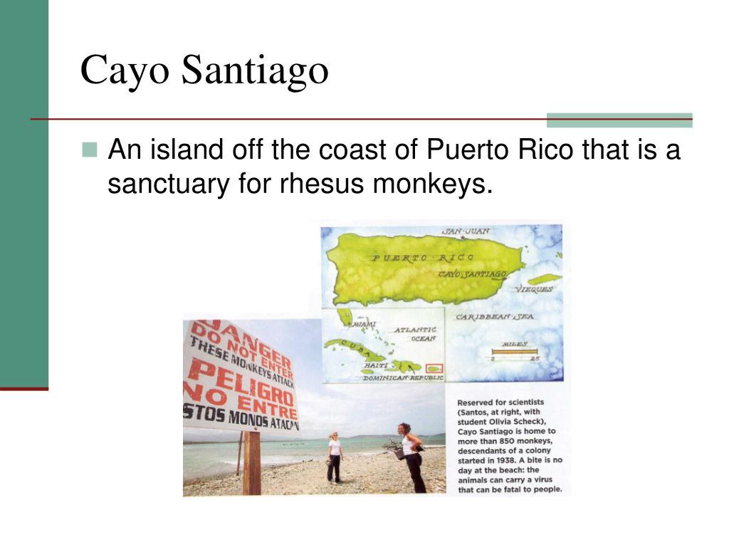 Cayo Santiago