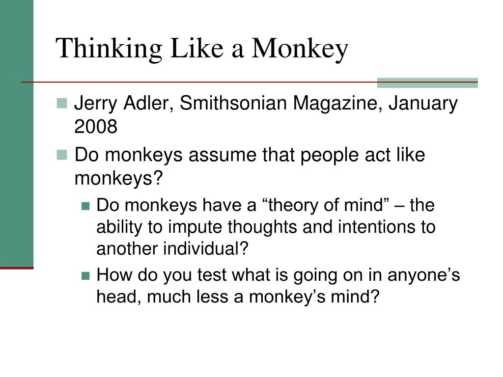 Thinking Like a Monkey