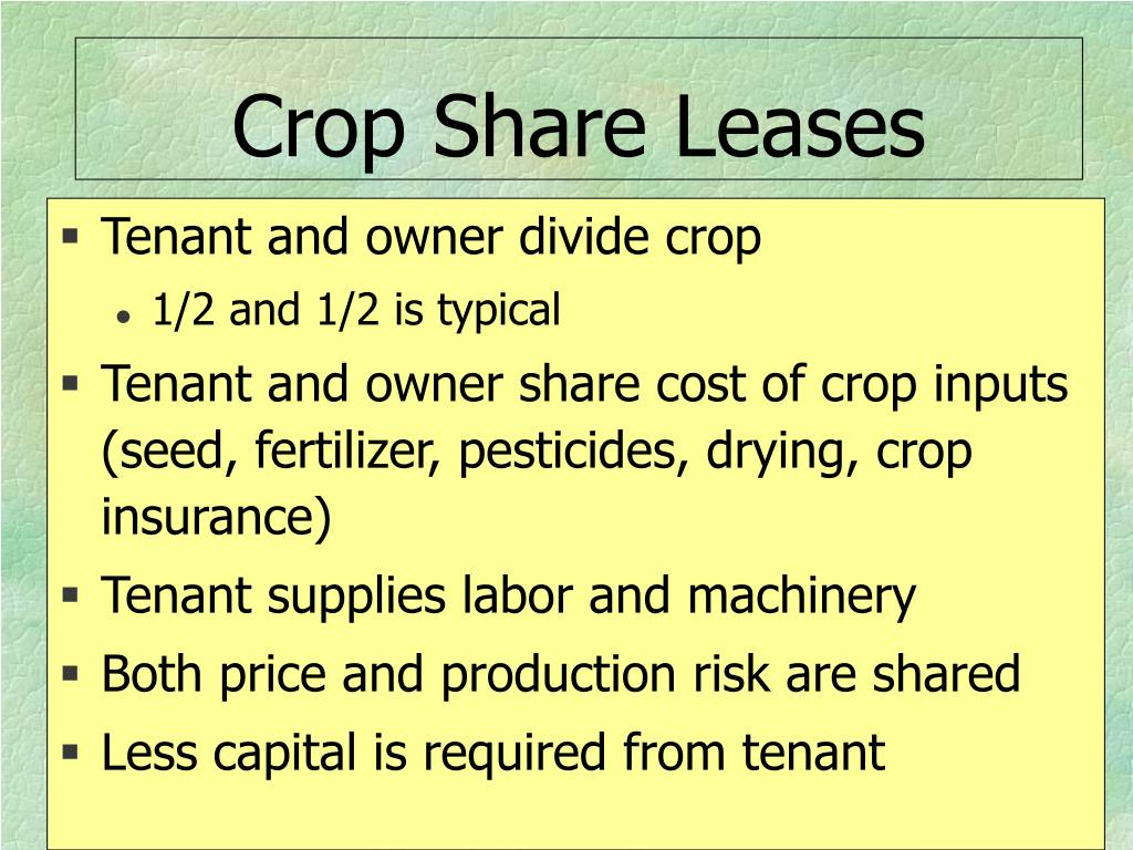 Crop Share Leases