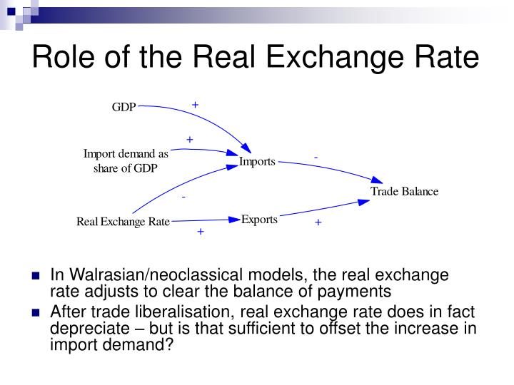 Role of the Real Exchange Rate