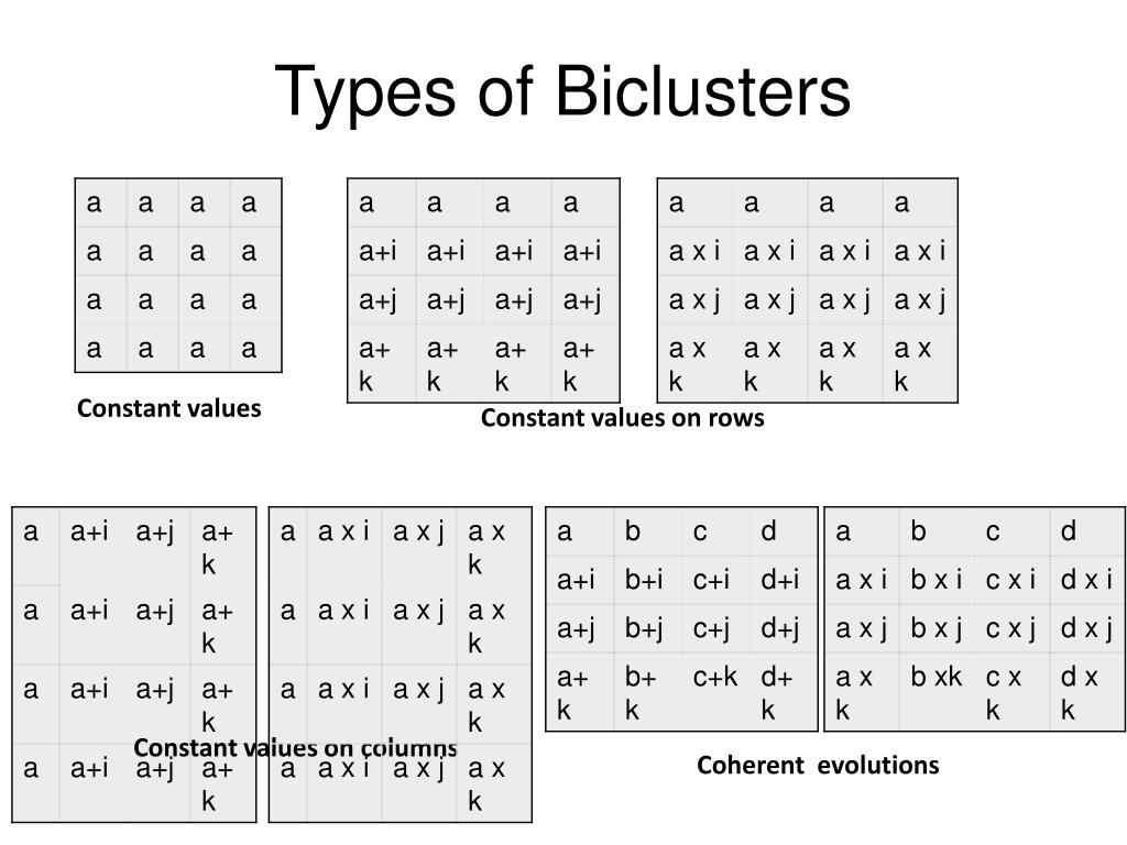 Types of Biclusters