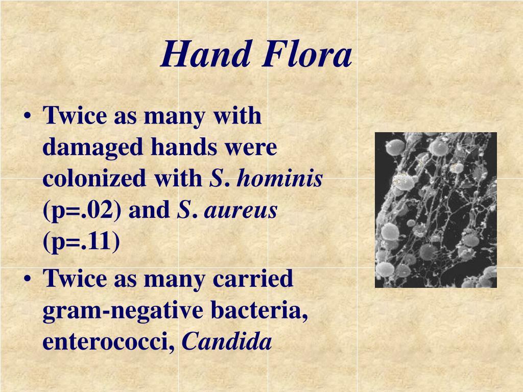Hand Flora