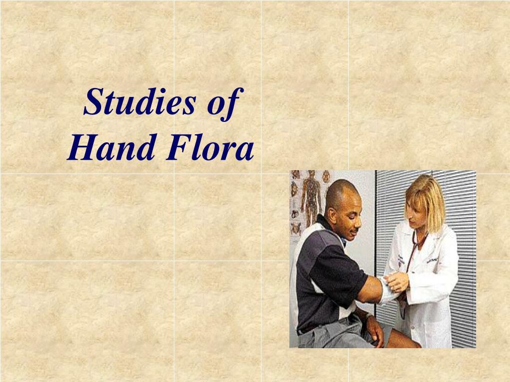 Studies of  Hand Flora