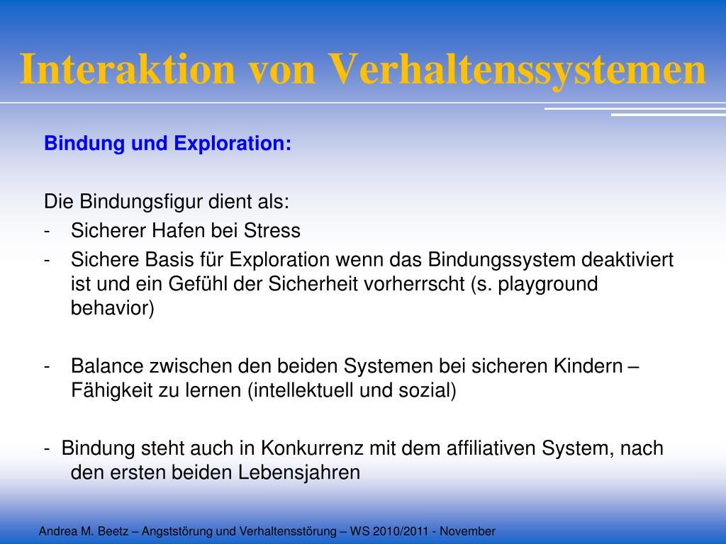 Interaktion von Verhaltenssystemen