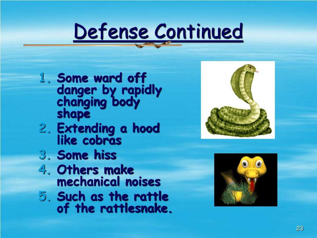 Defense Continued
