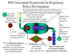 pat conceptual framework for regulatory policy development