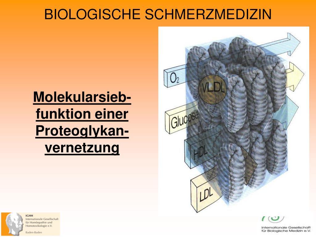 Molekularsieb-funktion einer Proteoglykan-vernetzung