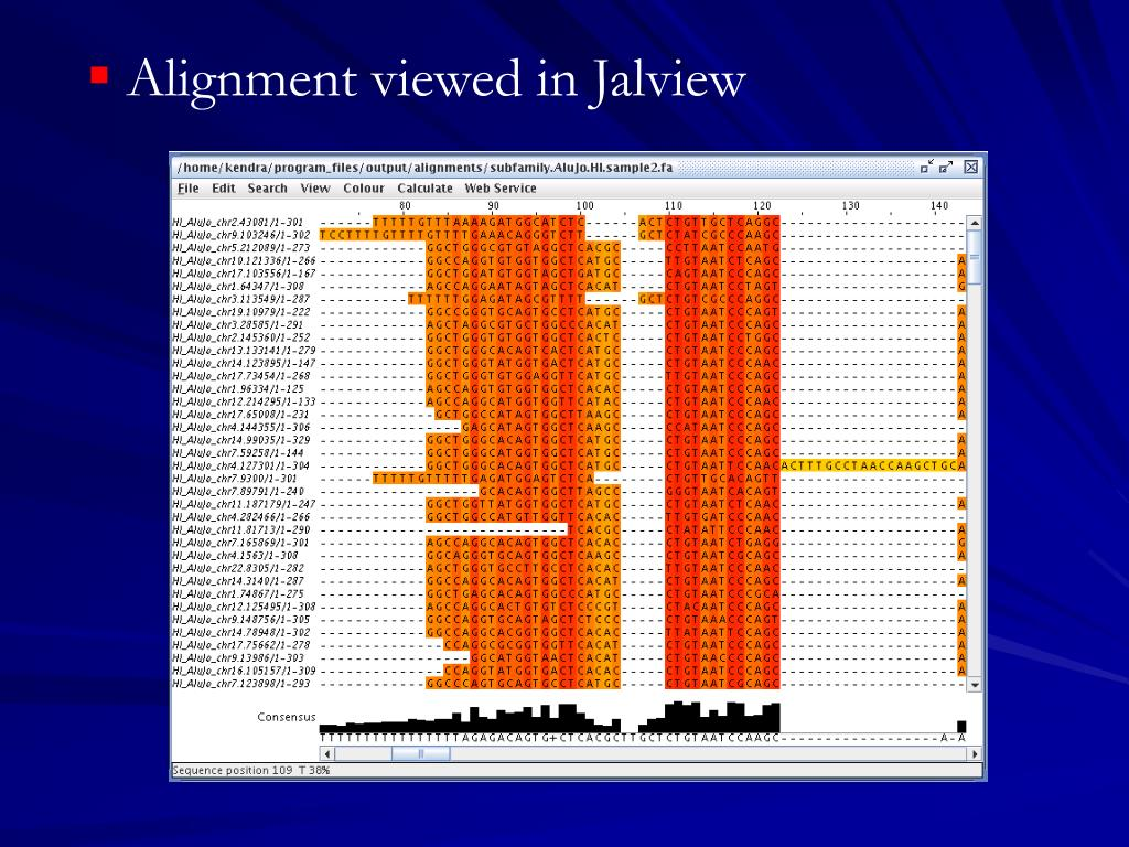 Alignment viewed in Jalview