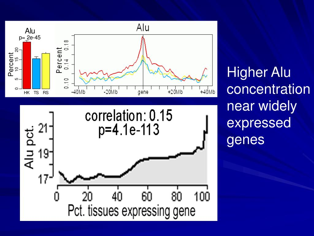 Higher Alu concentration  near widely expressed genes