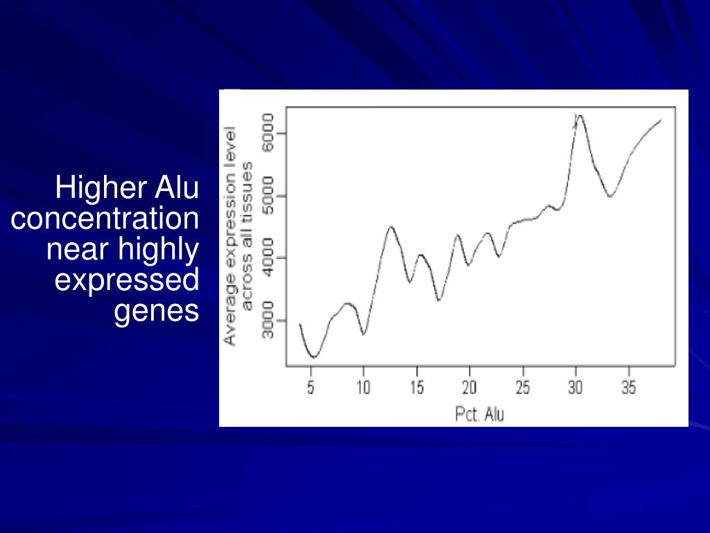 Higher Alu concentration near highly expressed genes
