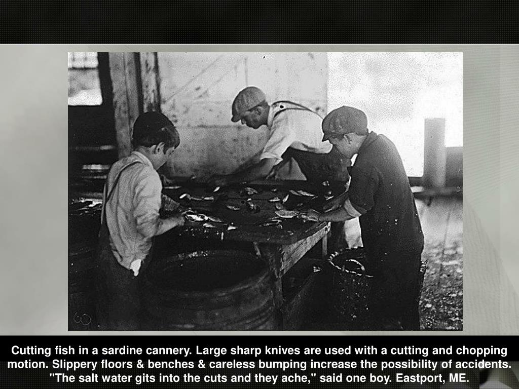 "Cutting fish in a sardine cannery. Large sharp knives are used with a cutting and chopping motion. Slippery floors & benches & careless bumping increase the possibility of accidents. ""The salt water gits into the cuts and they ache,"" said one boy. Eastport, ME."