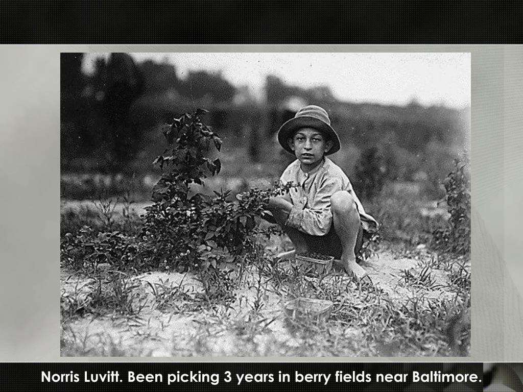 Norris Luvitt. Been picking 3 years in berry fields near Baltimore.