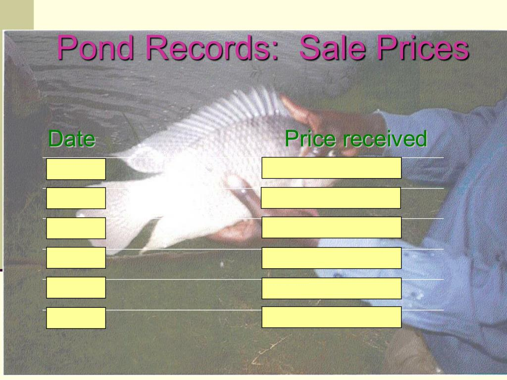 Pond Records:  Sale Prices