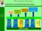 comprehensive agricultural support programme