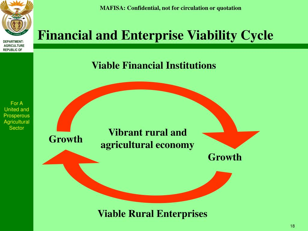 Financial and Enterprise Viability Cycle