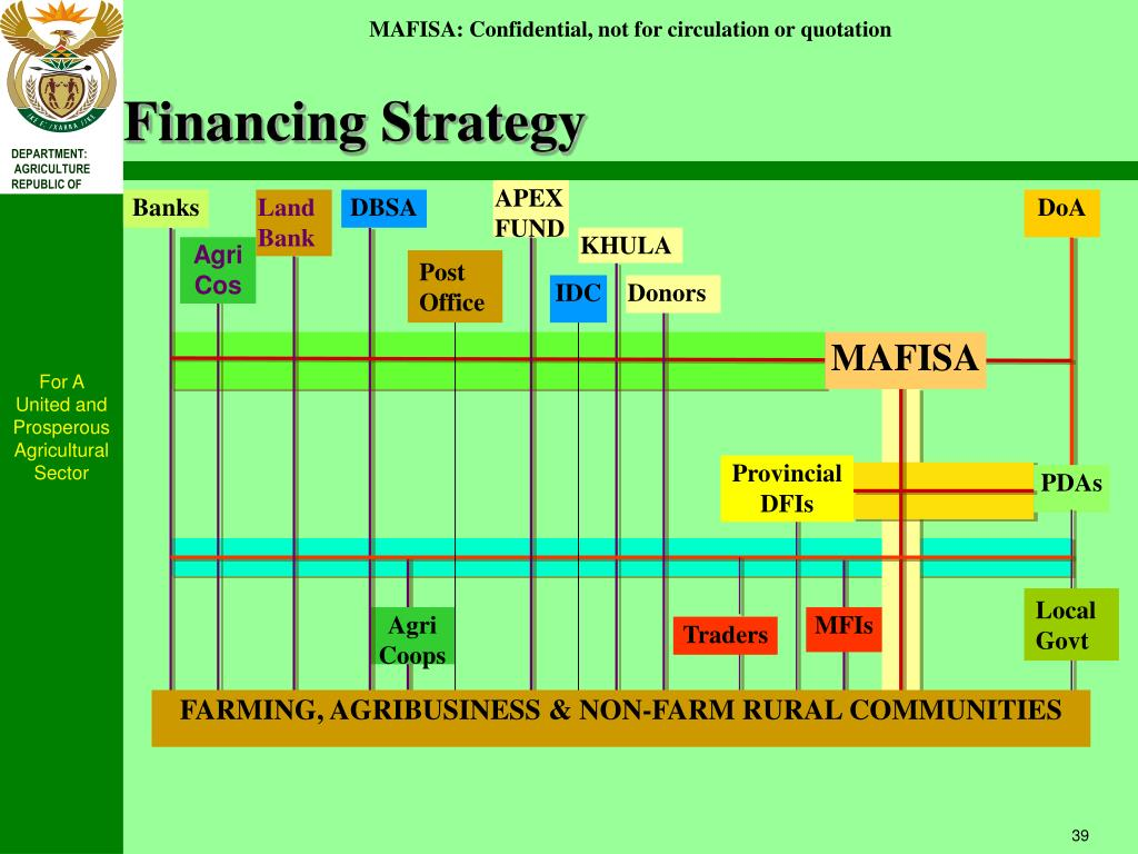 Financing Strategy
