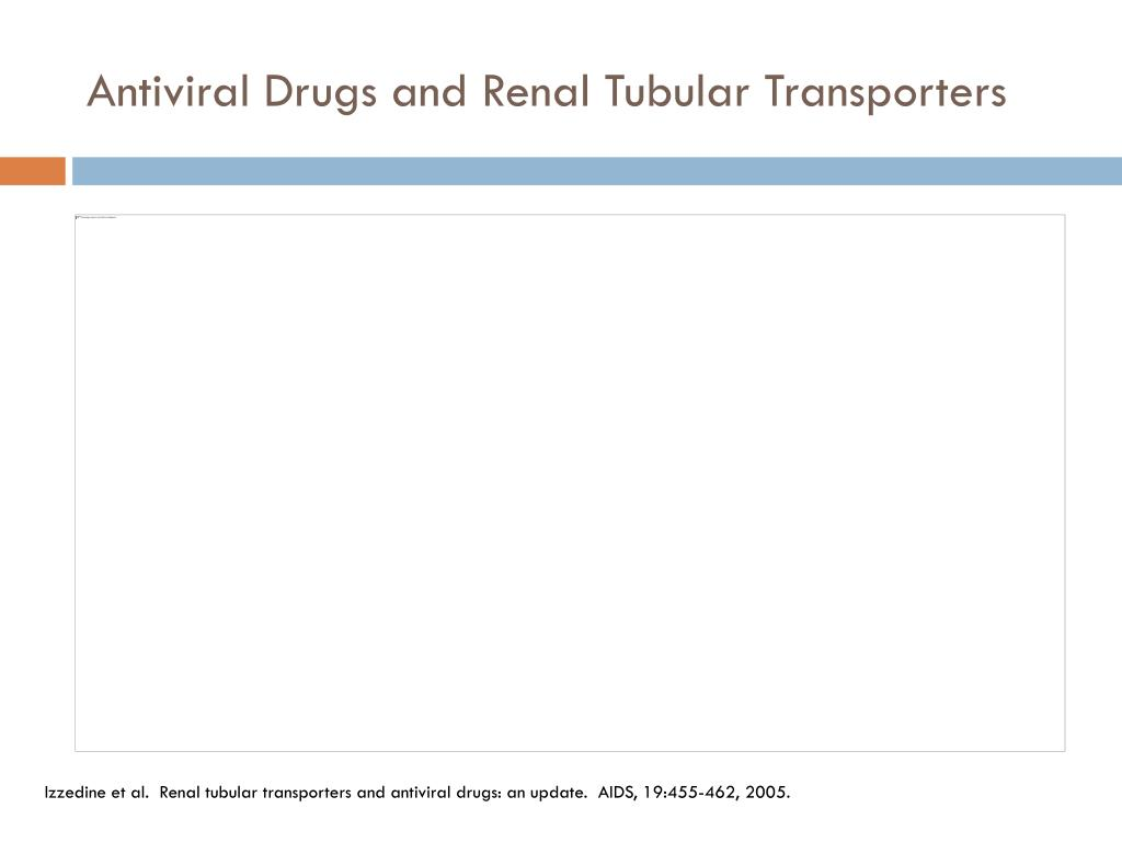 Antiviral Drugs and Renal Tubular Transporters