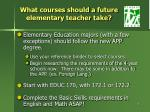 what courses should a future elementary teacher take