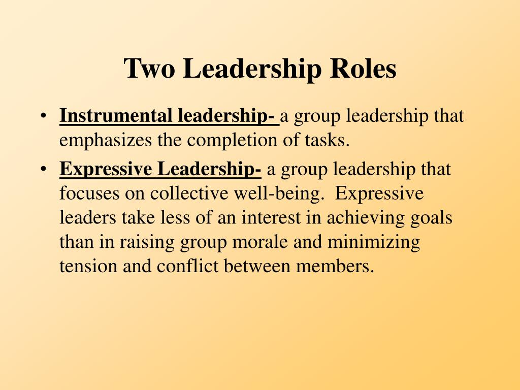 Two Leadership Roles