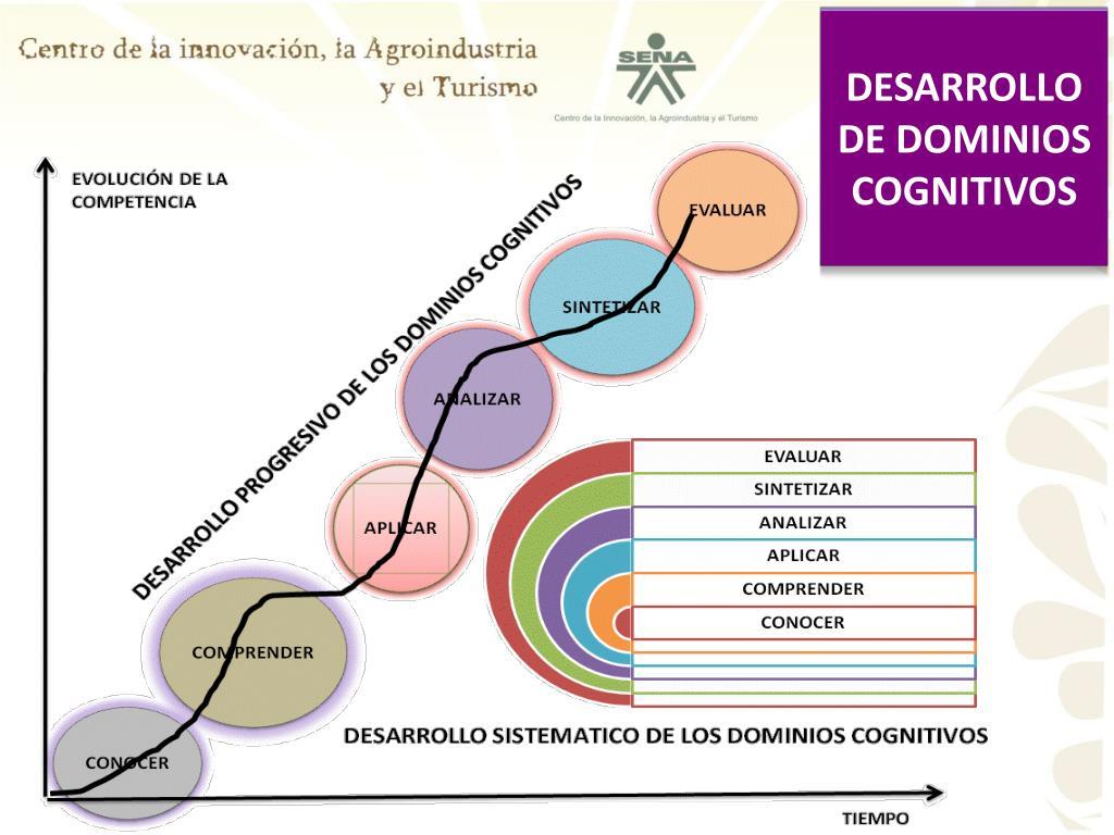 DESARROLLO DE DOMINIOS