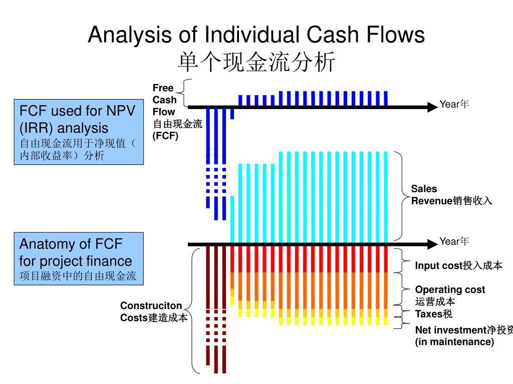 Analysis of Individual Cash Flows