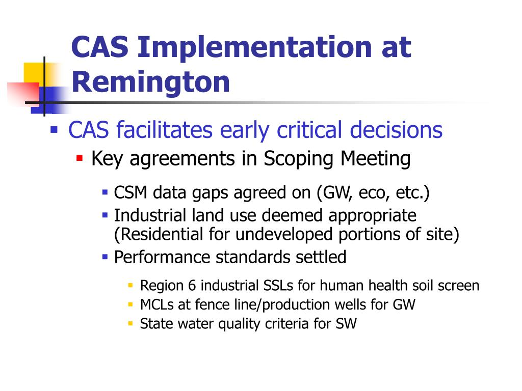 CAS Implementation at Remington
