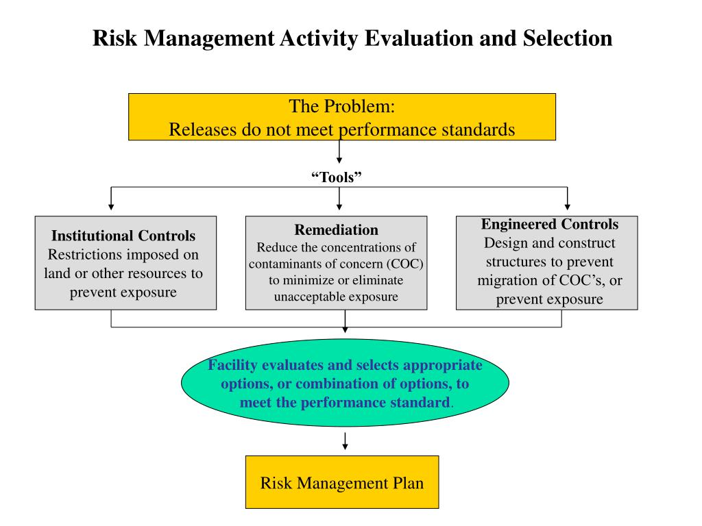 Risk Management Activity Evaluation and Selection