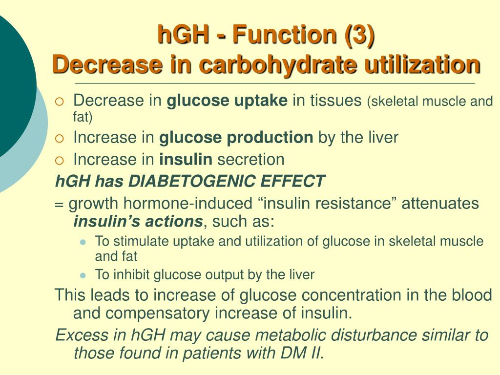 hGH - Function (3)