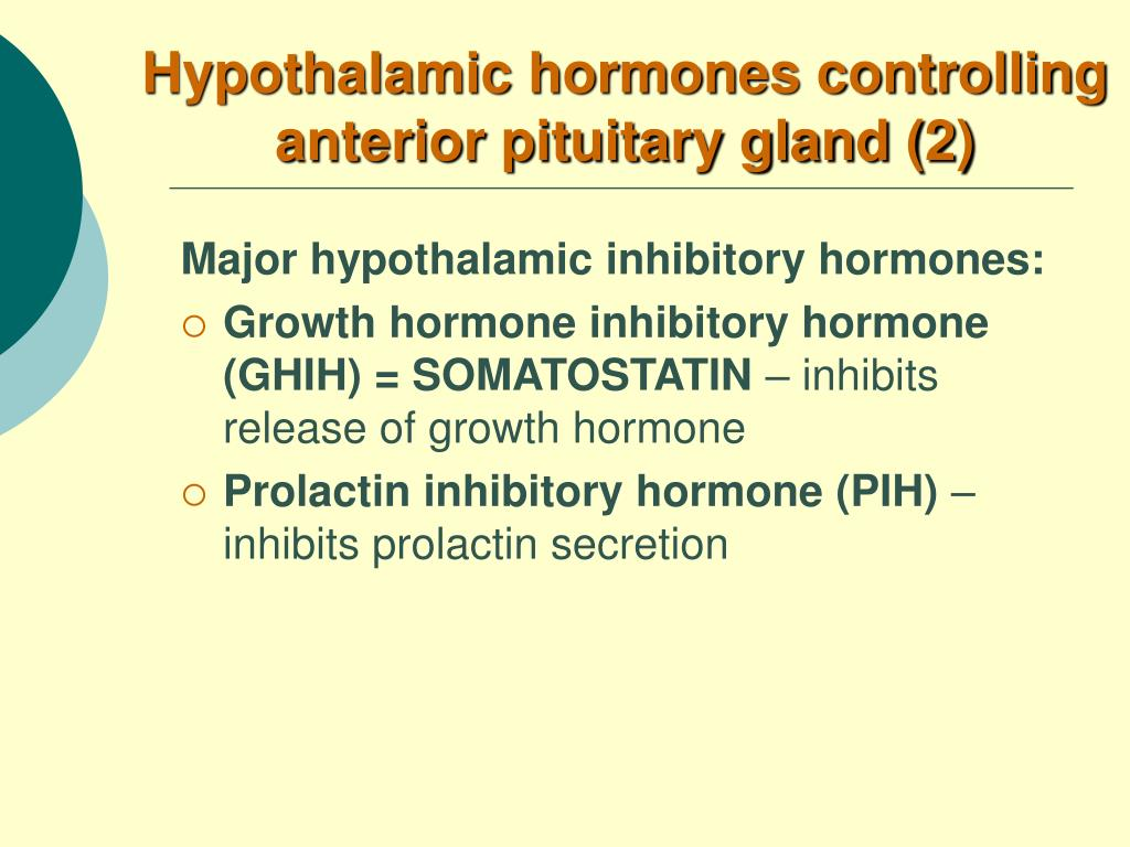 Hypothalamic hormones controlling anterior pituitary gland (2)
