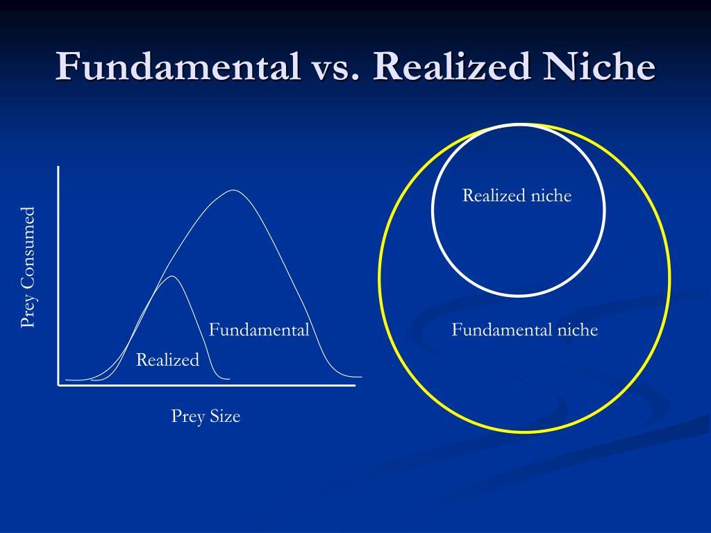 Fundamental vs. Realized Niche