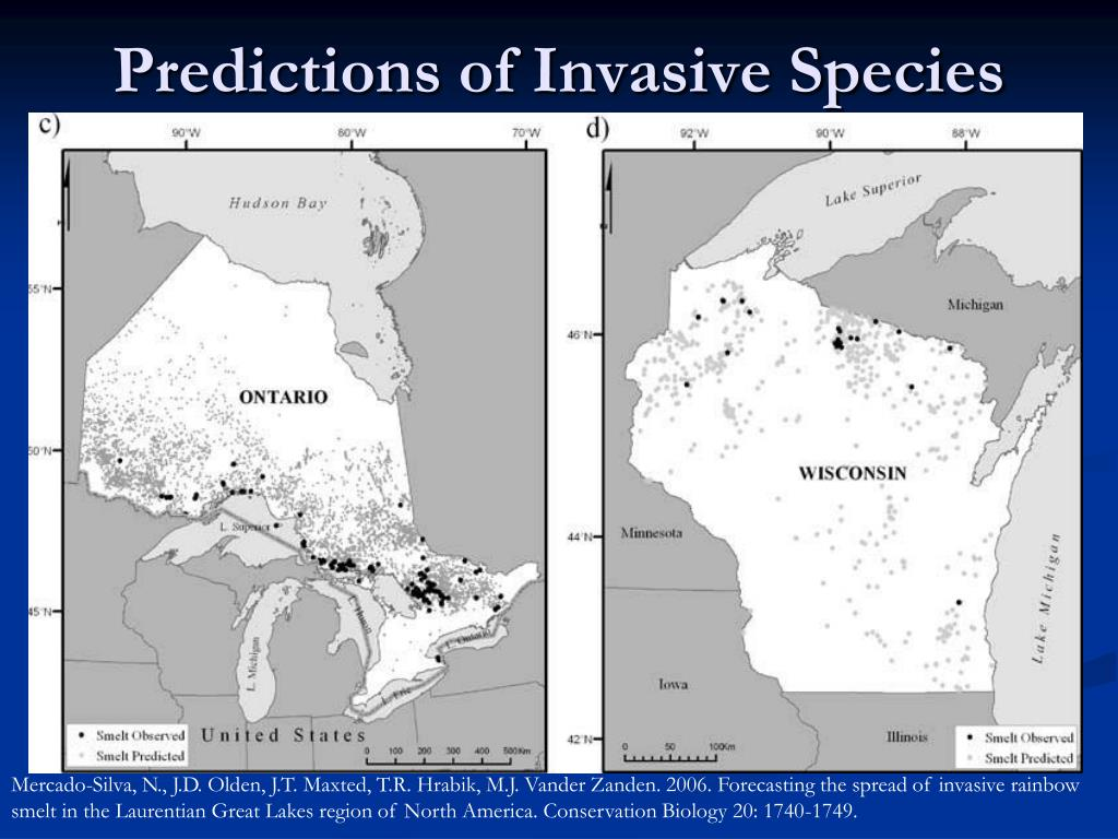 Predictions of Invasive Species