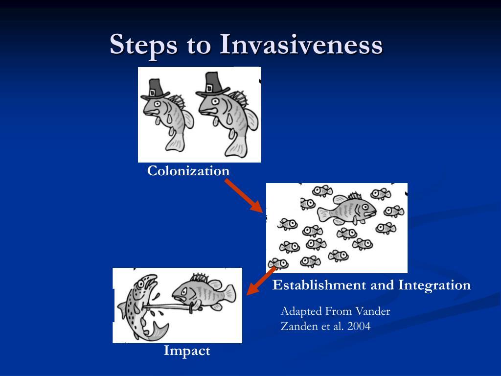 Steps to Invasiveness