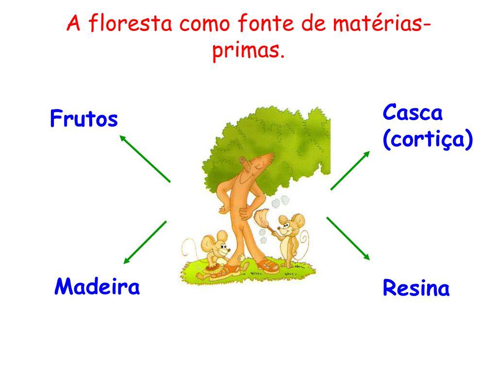 A floresta como fonte de matérias-primas.