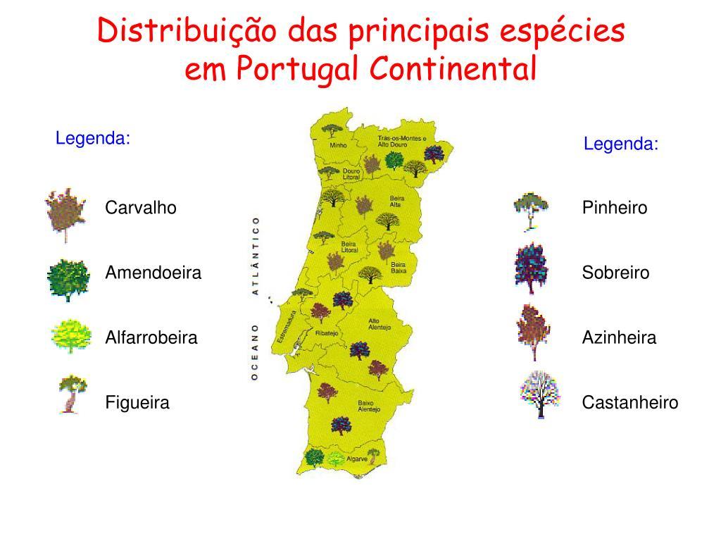 Distribuição das principais espécies