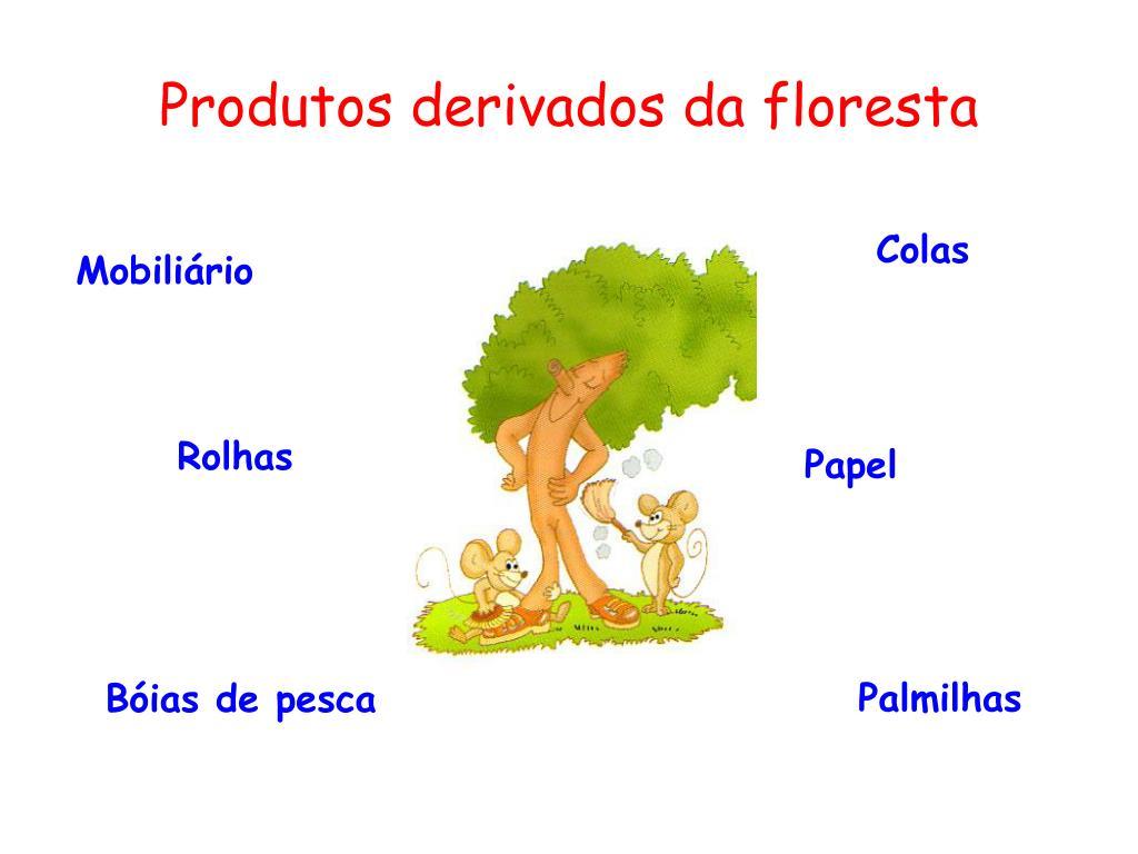 Produtos derivados da floresta