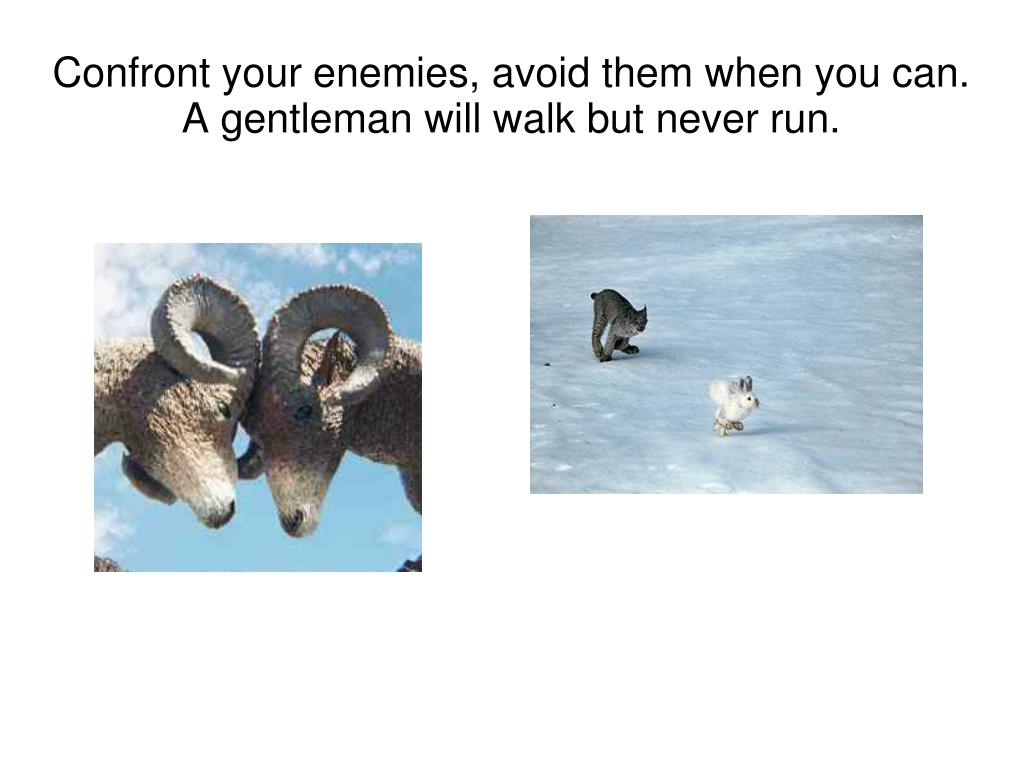 Confront your enemies, avoid them when you can.