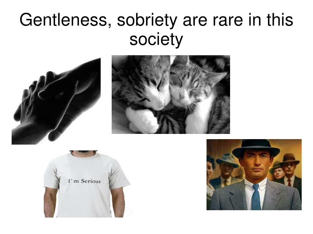 Gentleness, sobriety are rare in this society