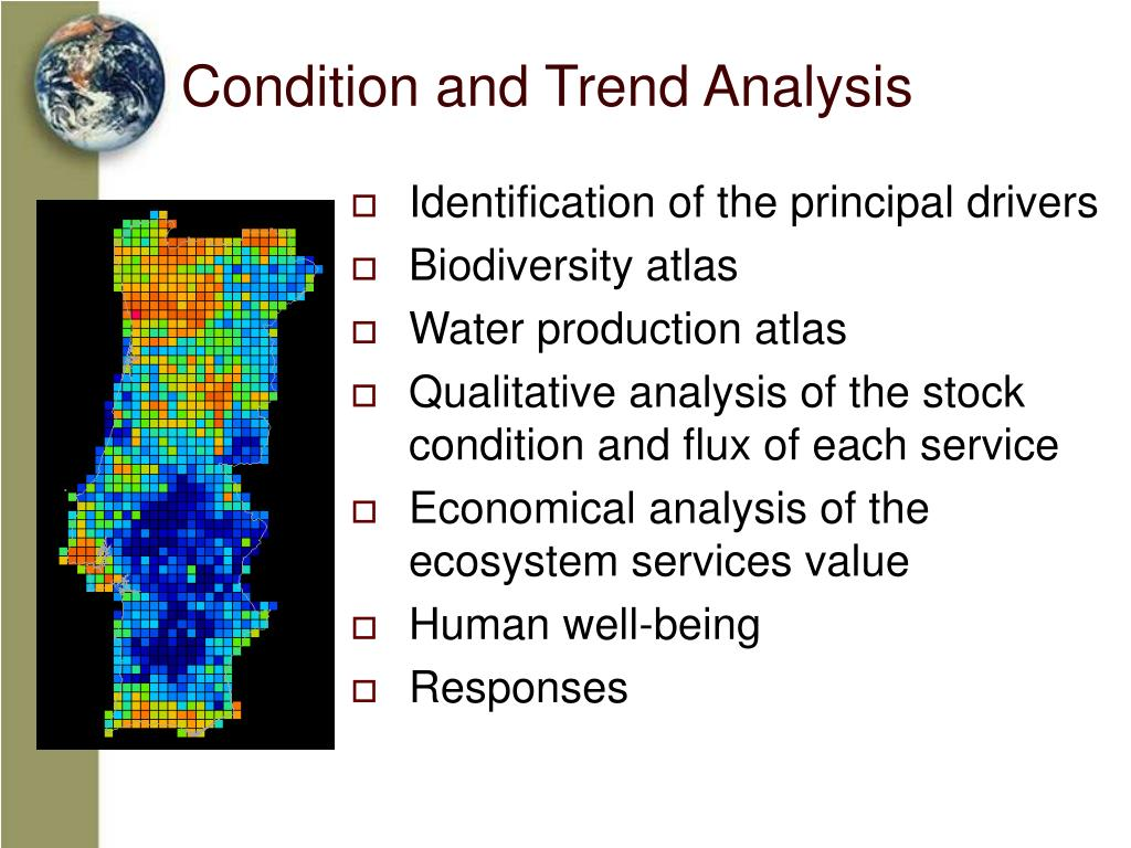 Condition and Trend Analysis