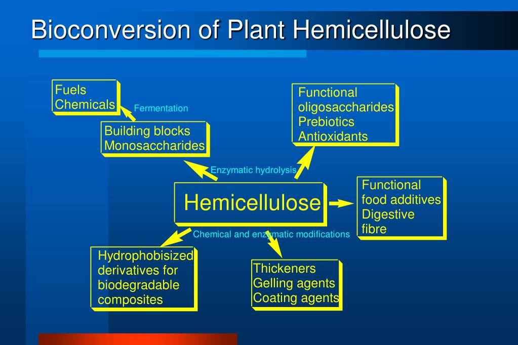 Bioconversion of Plant Hemicellulose