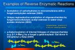 examples of reverse enzymatic reactions