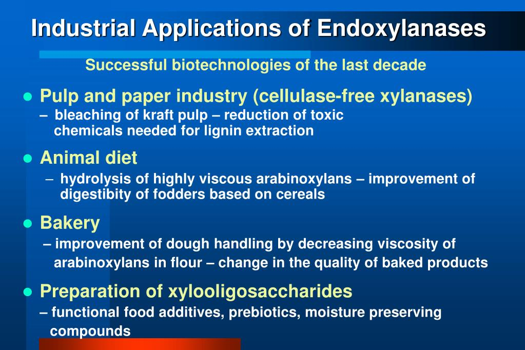 Industrial Applications of Endoxylanases