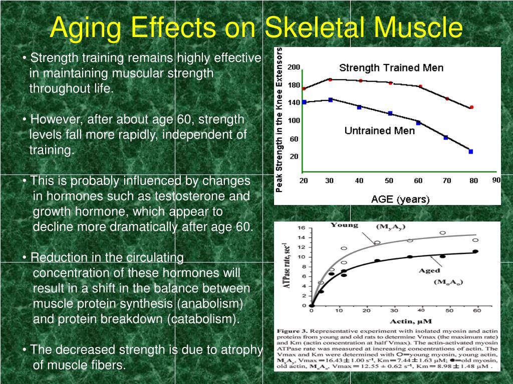 effects of resistance training towards the aging process While it is true that physical debilitation is a natural part of the aging process, this debilitation can rather than the effects of the normal aging process according to the resistance training has increased strength in residents' knees and ankles, which can help.