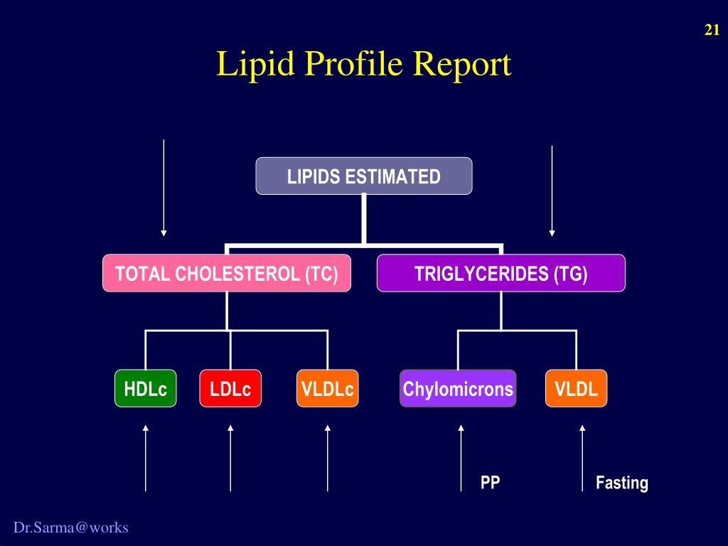 Lipid Profile Report