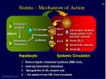 statins mechanism of action
