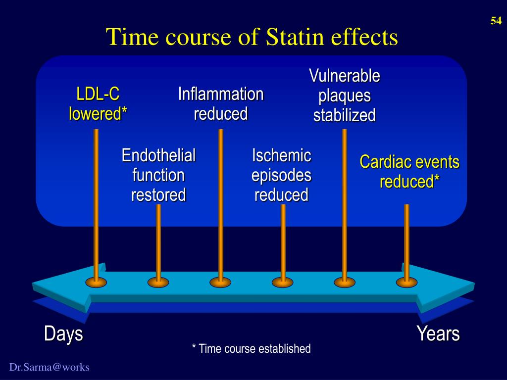 Time course of Statin effects