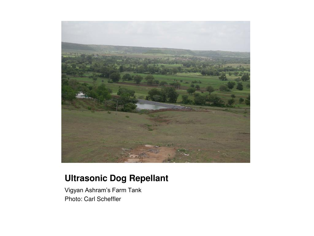 Ultrasonic Dog Repellant